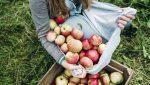 6 lợi ích đã được chứng minh của Giấm táo